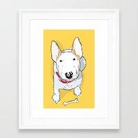 bull terrier Framed Art Prints featuring bull terrier by bbay