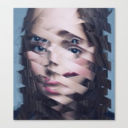 Another Portrait Disaster · N3 Canvas Print