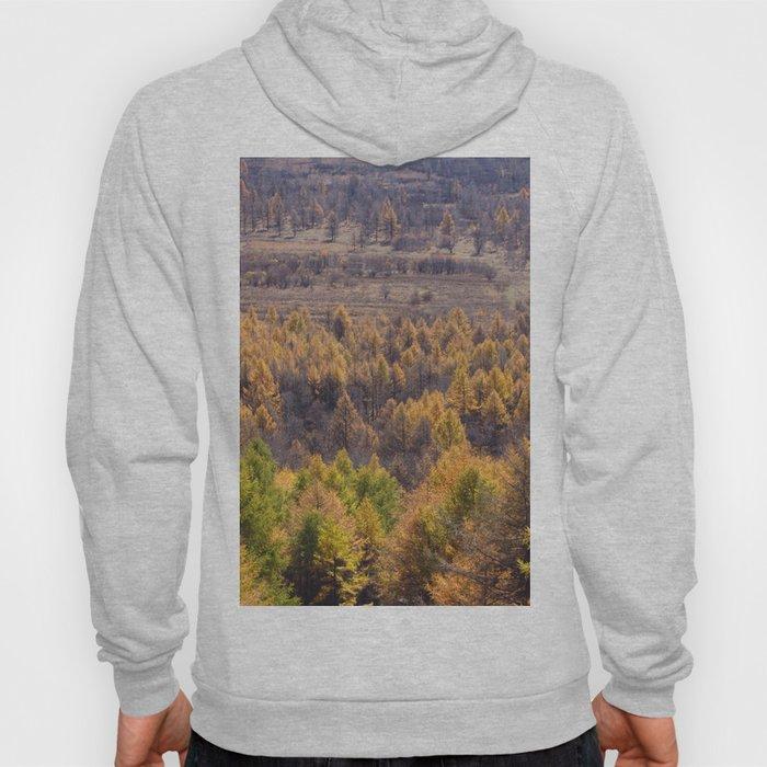 Autumn Color Hoody