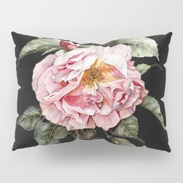 Wilting Pink Rose Watercolor on Charcoal Black Pillow Sham