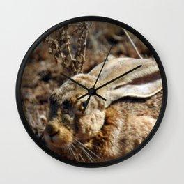 Jackrabbit Wall Clock