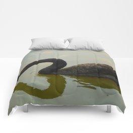 Black Swan Serenity L Comforters