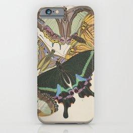 E.A.Séguy - Papillons / Butterflies (1925) Plate 8 iPhone Case