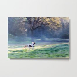 Chasing The Morning Light Metal Print