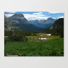 Nature's Bounty Canvas Print