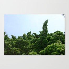 Bush Tree Canvas Print
