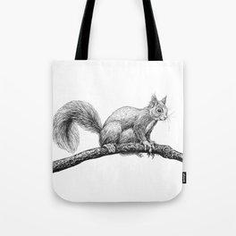 Squirrel drawing Tote Bag