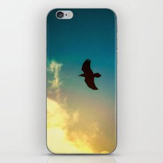 Raven Flight iPhone & iPod Skin