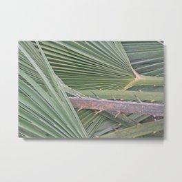 Palm leaves natural pattern Metal Print