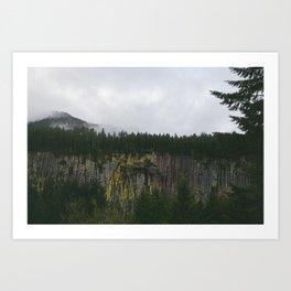 Landscape, Gifford-Pinchot national forest Washington Art Print