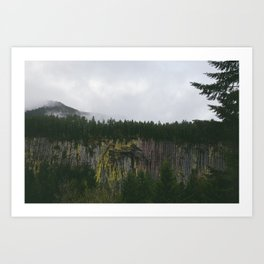Landscape, Gifford-Pinchot national forest Washington Art Print