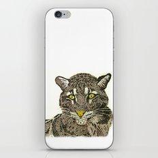 Clouded Leopard iPhone & iPod Skin