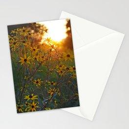 Daisy Sun Stationery Cards