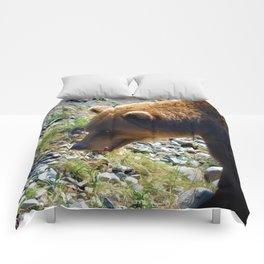 Griz - Wildlife Art Print Comforters