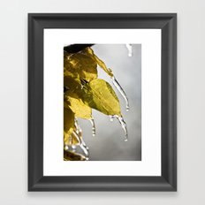 Dripping Ice Framed Art Print