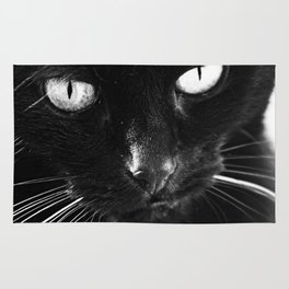 Chilly the Black Cat Rug