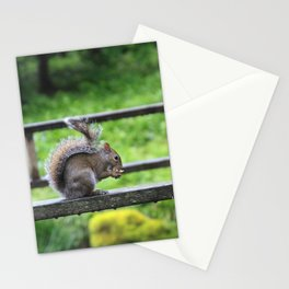 Nuts 'Bout Nuts Stationery Cards