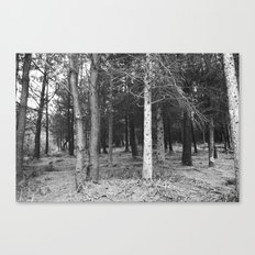 BLACK AND WHITE// FOREST Canvas Print
