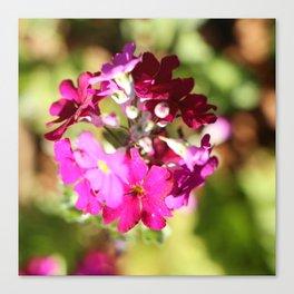 Pienk & Purple little  Flowers Canvas Print