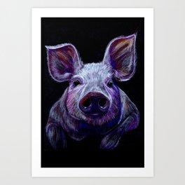 Colorist Pig Illustration Art Print