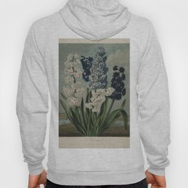 Edwards, S. (1768-1819) - The Temple of Flora 1807 - Hyacinths Hoody