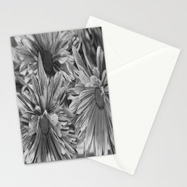 Flowers shadows Stationery Cards