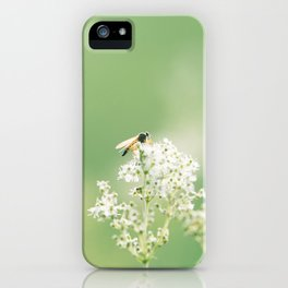 Bee on Flower iPhone Case