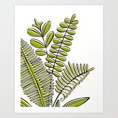 Fern Study Art Print