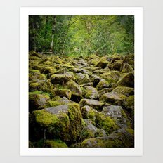 Oregon Path Art Print