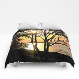 Tree Silhouette At Sunset Comforters