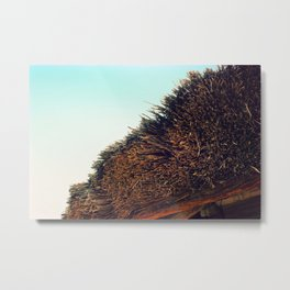 Thatched roof Metal Print