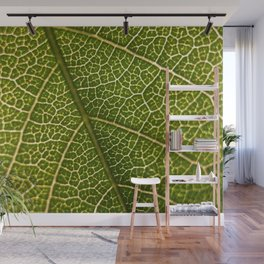 Green Leaf (Color) Wall Mural