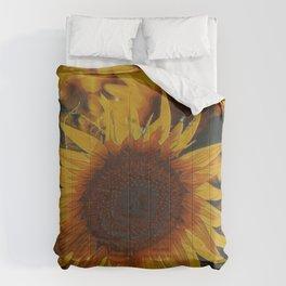 Vigor I Comforters