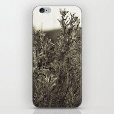 Fall Textures iPhone Skin
