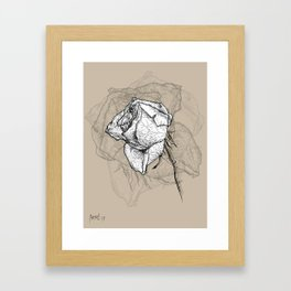 Dying rose Framed Art Print