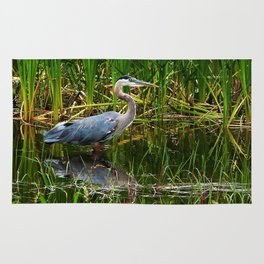 Great Blue Heron Hunting Along the River Rug