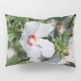 White Rose Of Sharon Pillow Sham