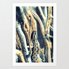 Wooden Viper Art Print