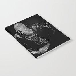 Aliens Here Notebook