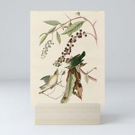 Worm eating Warbler - John James Audubon's Birds of America Print Mini Art Print
