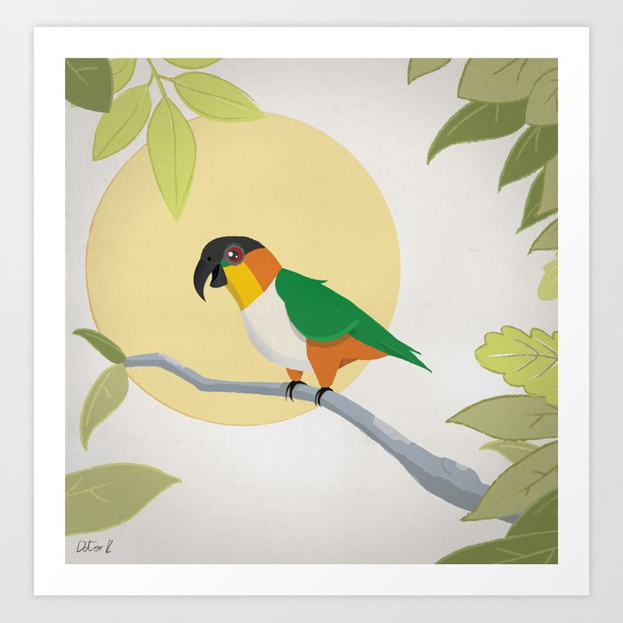 Black-Headed Caique Parrot Art Print by detor | Society6