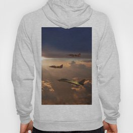 The Flight Home Hoody