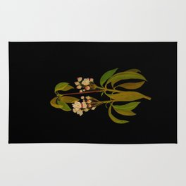 Kalmia Latifolia Mary Delany Vintage Floral Collage Botanical Flowers Black Background Rug