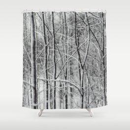 Winter gris Shower Curtain