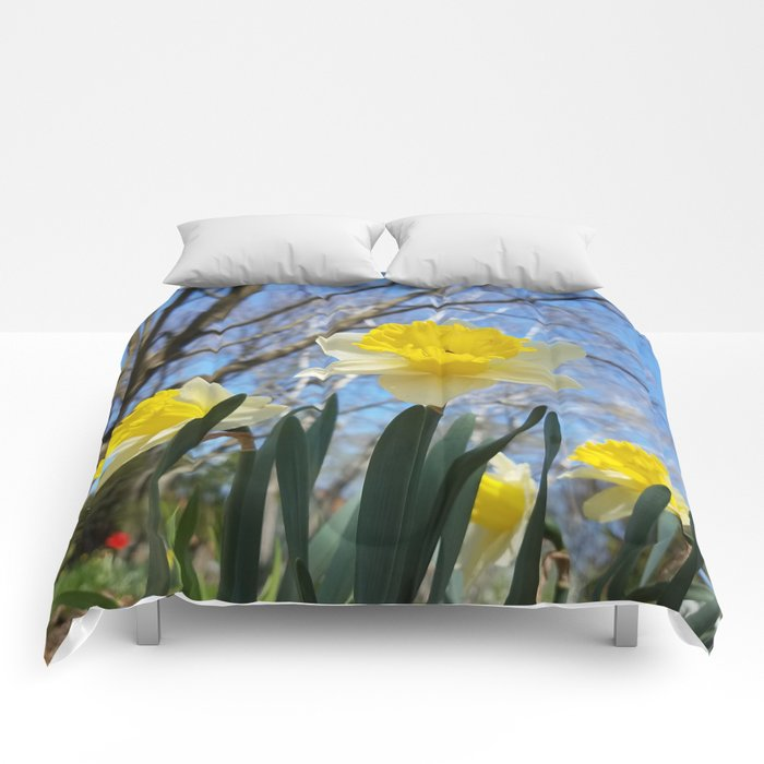 Daffodils in the sky Comforters