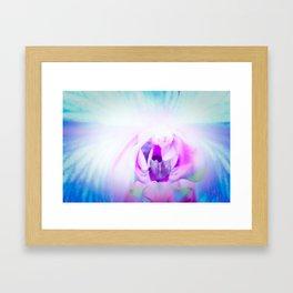 Blue Orchid I Framed Art Print