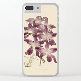 R. Warner & B.S. Williams - The Orchid Album - vol 01 - plate 049 Clear iPhone Case