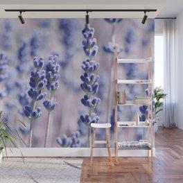 Lavender 0158 Wall Mural