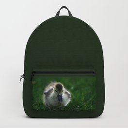 Cute Duckling Walking on a Lawn Backpack