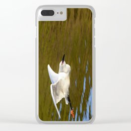 A Snowy Egret flies in the morning sunlight looking for a place to fish. Clear iPhone Case